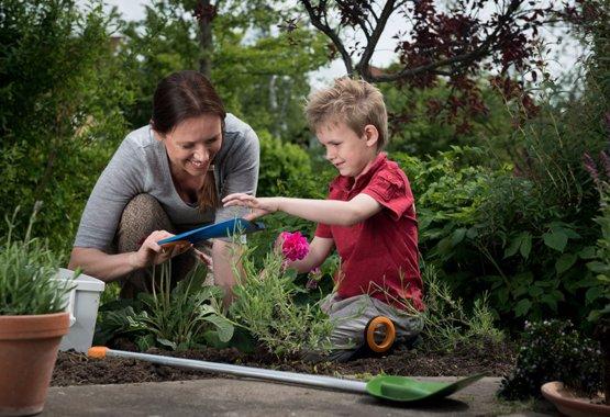 Bahçecilik, çocuk oyununa dönüşebilir