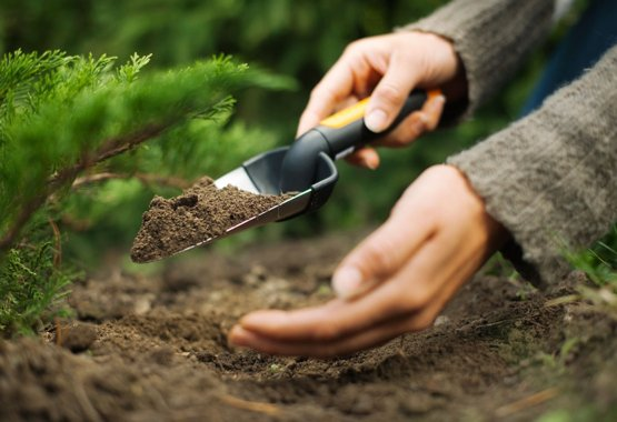 Yeni bitkilerinize güzel bir başlangıç yaptırın